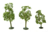 "3"" - 4"" Sycamore Trees - Pack Of 3"