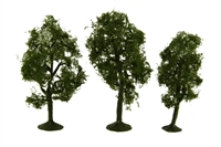 """3"""" - 4"""" Maple Trees - Pack Of 3"""