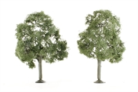 "Pack of 2 x 5"" Walnut trees"