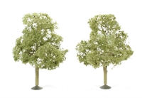 "5.5"" Elm Trees - Pack Of 2"