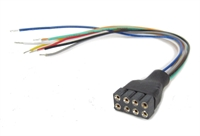 8-pin decoder socket with harness x1