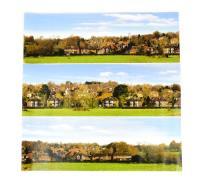 Large Village Backscene